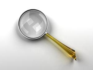 Поиск информации по организации