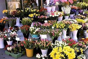 Точка по продаже цветов