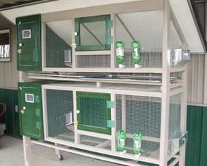 Клетки для содержания птиц
