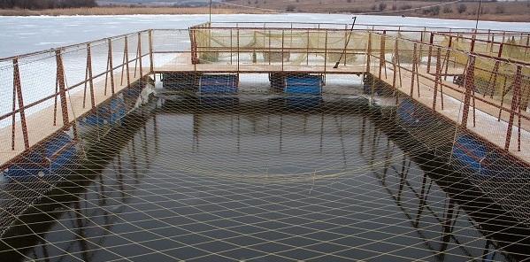 оборудованный водоем