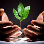 развитие предпринимательства