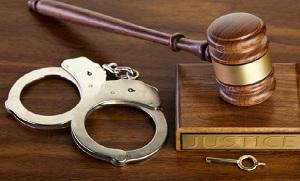 положения закона